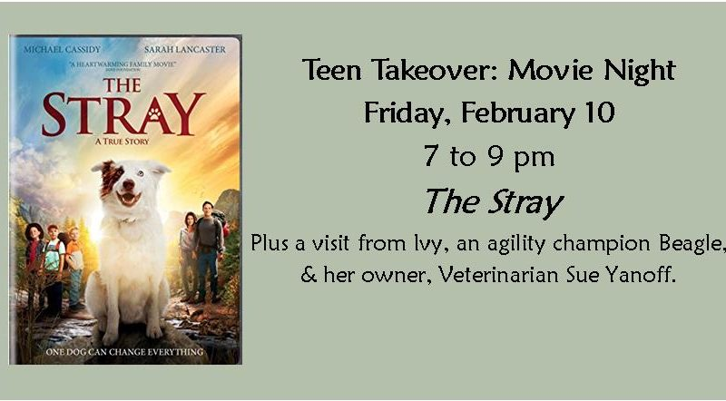 February Teen Takeover, Agility Dogs, Movie the Stray