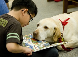 Christian Agama, 7, left, of Placentia reads aloud to Toby, a therapy dog with Therapy Dogs International at Placentia Library's Read to the Dogs program. On the first Monday of each month therapy dogs from Bright & Beautiful Therapy Dogs, Inc. and their owners meet at the library so children can read aloud to the dogs. The exercise helps children ease the anxieties of reading out loud.   ///ADDITIONAL INFORMATION: pnt.dogs.0110 – 1/7/13 – LEONARD ORTIZ, ORANGE COUNTY REGISTER –  Dogs will be out at Placentia Library on Monday, Jan. 7 from 6 to 7 p.m. to listen to people of all ages as they read aloud. Trained dogs from Bright & Beautiful Therapy Dogs, Inc. will at no cost sit and listen to readers in an effort to ease the anxieties of learning to read out loud.